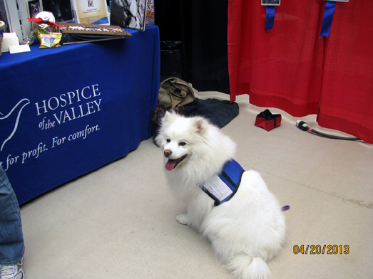Cotton at Hospice expo